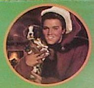 'Elvis' from the web at 'http://www.difossombrone.it/curiosita/../images/personaggi/elvisboxer2.jpg'