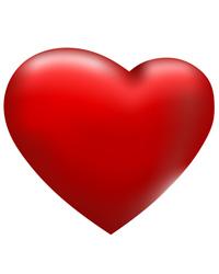 Ischemia cardiaca nel cane