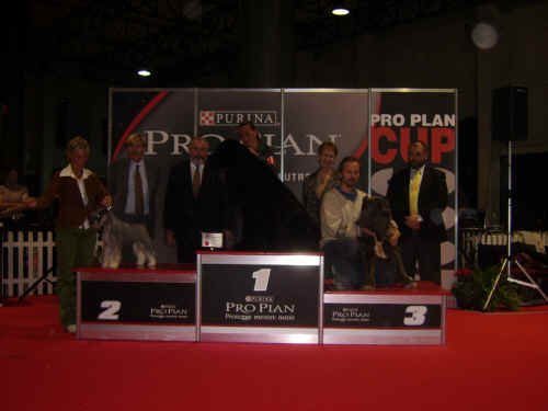 podio proplan cup 2006