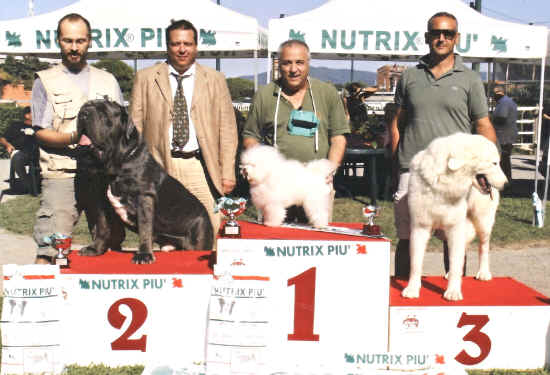 2° nel best in show